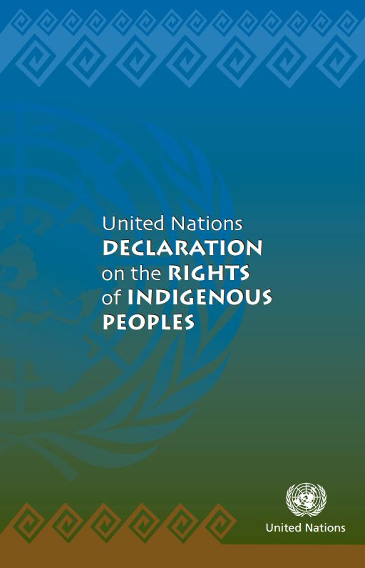 Statement from the NAEDB on the United Nations Declaration on the Rights of Indigenous Peoples